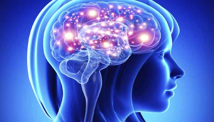 Study: Yes, Womens Brains Are More Active Than Mens
