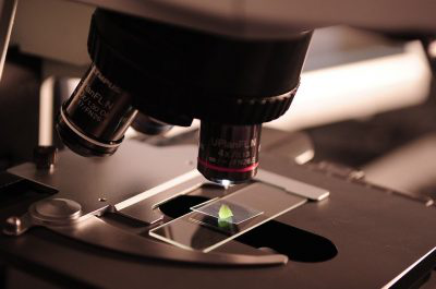 Black Scientists Applying for NIH Grants Consistently Receive Lower Scores, Says Study